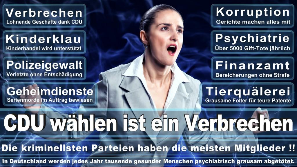 Europawahl CDU SPD FDP www.Gewohnheitsverbrecher.de