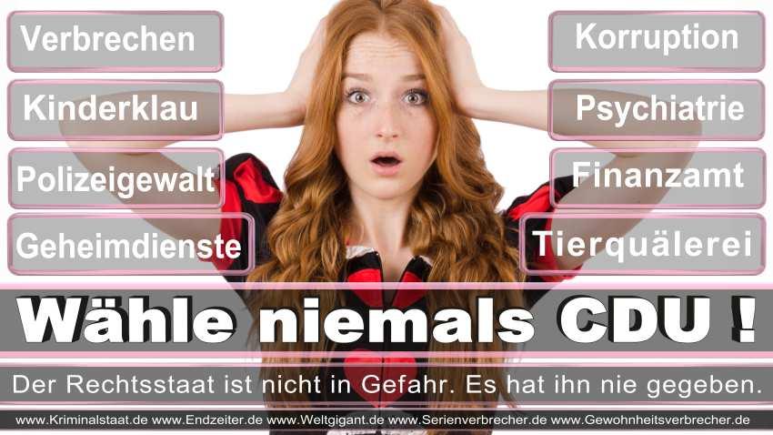 CDU Wahlplakate 2016